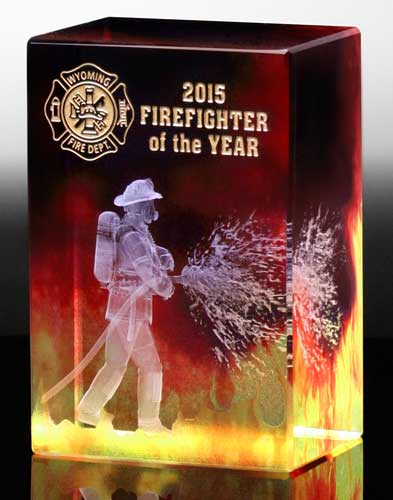 firefighter of the year awards